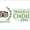 trip_choice_2015.png